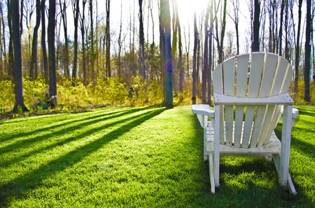 White Muskoka Chair looking over a forest