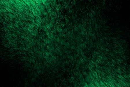 Fur of wolf abstract background.