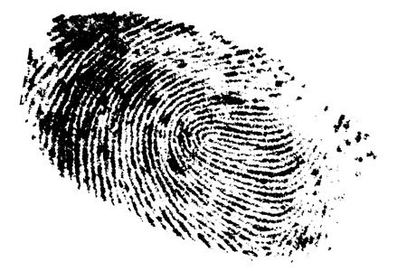 Fingerprint on white background, digital retouch  photo