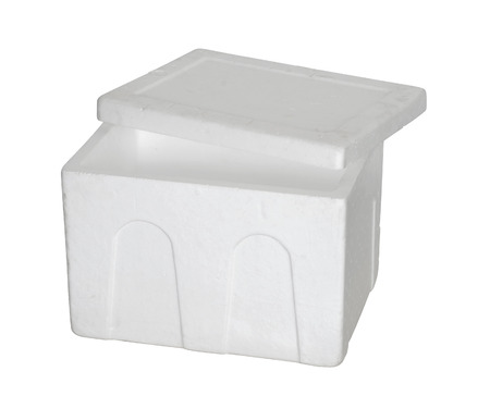 Open Styrofoam box on white background 免版税图像 - 28879368