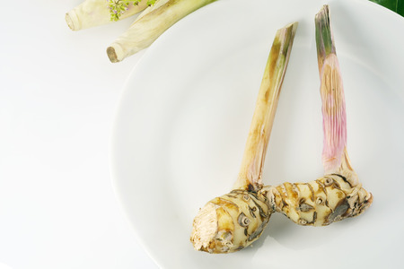 galangal: Galangal on white plate with copy space.