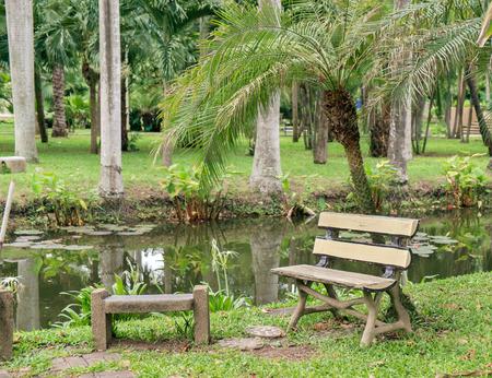 empty bench: Empty bench park near the pond.