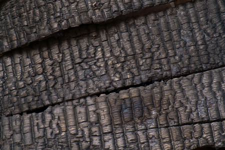 burnt: Burnt wood wall texture background.