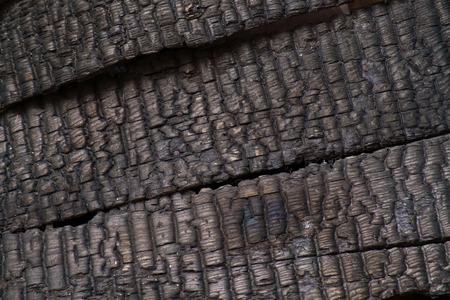 burnt wood: Burnt wood wall texture background.
