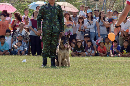 raid: Bangkok,THAILAND, JANUARY 9 : This event is Children's day from Thailand. Thailands Army show dog training, raid, climb around, and various weapons, on JANUARY 9, 2016, Thailand.