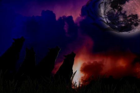 animal screaming: Silhouette of wolves with moon at night. Digital retouch.