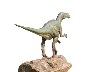 View of dinosaur statue on white background.