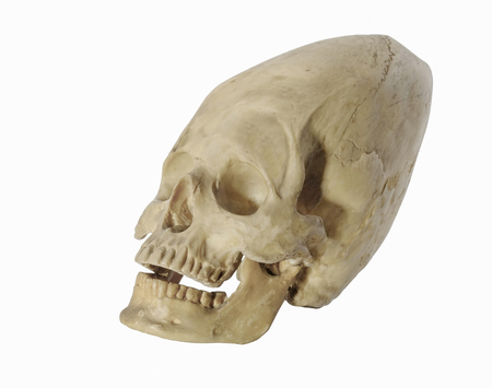 Mystery skull head on white background.