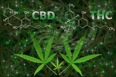 View of marijuana leaf and CBD/THC formula, Tetrahydrocannabinol on dark background. 免版税图像
