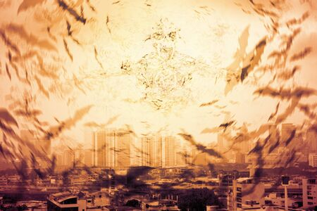 Crowd of bat on the sky in the city. Virus outbreak. Digital retouch.