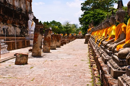 Aligned statues of Buddha