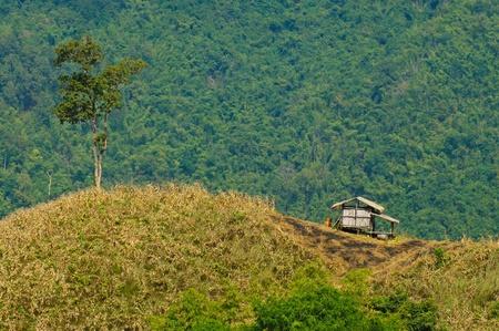 Hut in the valley,Thailand.
