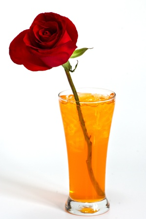 Red rose in glass of orange juice Stock Photo