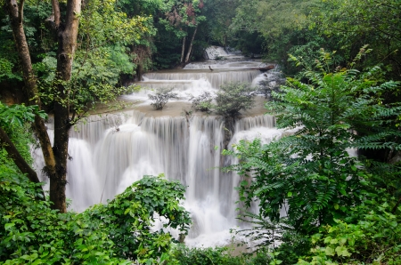 Beautiful forest waterfall in Thailand