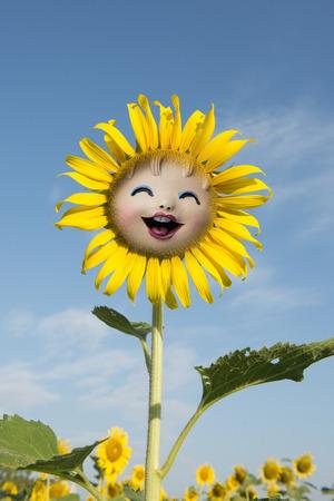 lovely sunflower