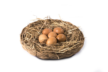 Brown eggs in grassy nest  isolated on  white background