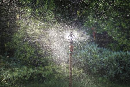 Sprinkler spraying water in the garden.