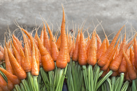 Fresh carrots for sale at a farmers market in Thailand.