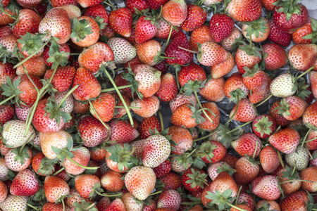 fresh organic strawberries closeup background Stock Photo