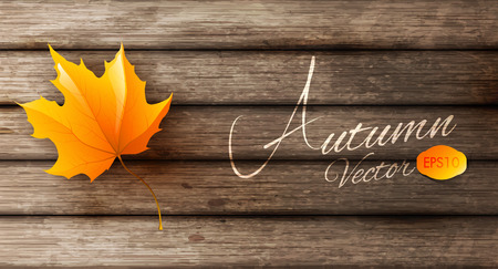 fall leaves border: abstract autumn background Illustration