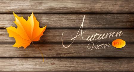 abstract autumn background Ilustração