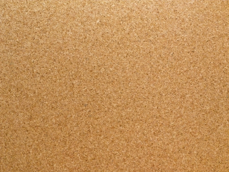 Corkboard texture for background photo