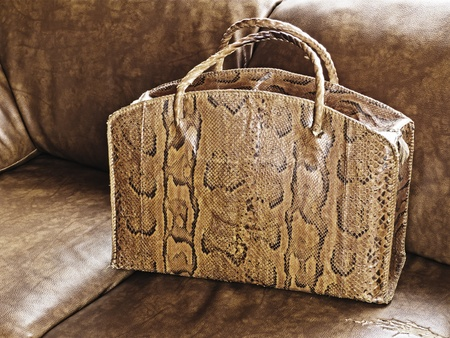 Old snakeskin leather bag from Congo on couch