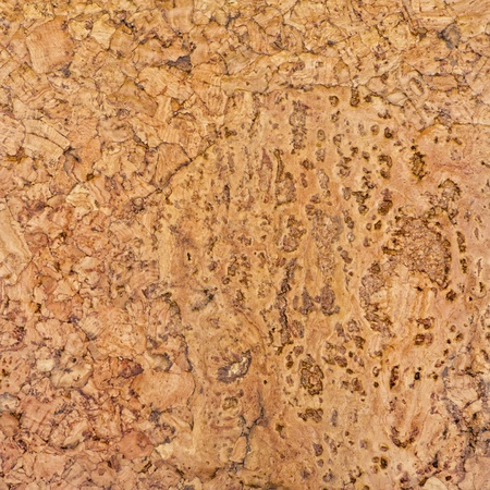 brown cork: Beautiful detailed cork texture Stock Photo