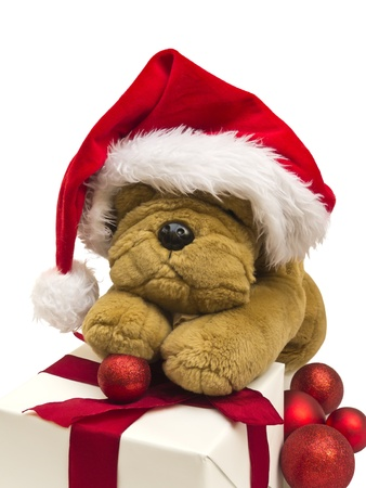 Christmas puppy with decoration on white background photo