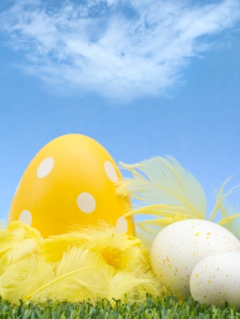 Easter eggs with feathers in grass against sky background photo