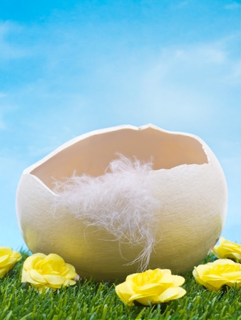 cracked egg: Empty easter egg in grass with flowers on sky background Stock Photo