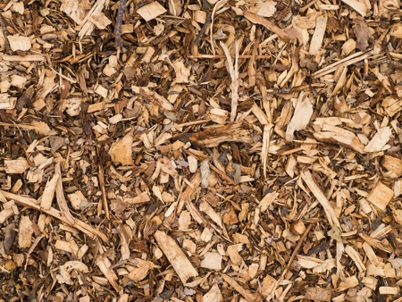 mulch: Wood chips for background or texture