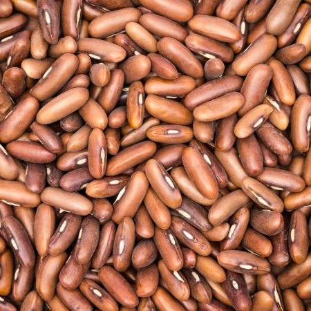 Brown beans closeup for background photo