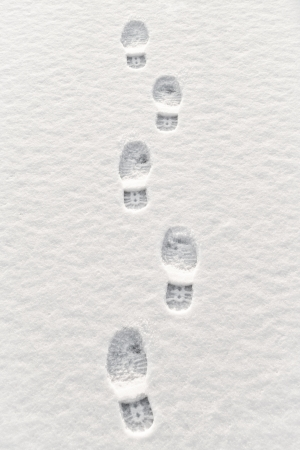 foot prints: Closeup of multiple footsteps in snow
