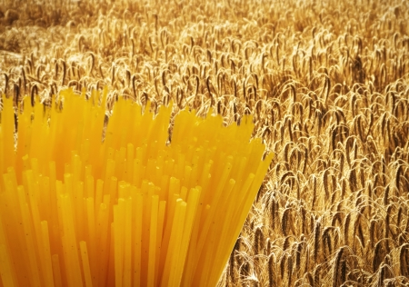 Composite of spaghetti on grain field Stock Photo - 14576137