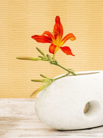 Red lily in white abstract shaped vase photo