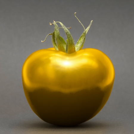 Golden tomato on grey background photo