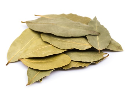 dried leaf: Bay laurel leaves on white Stock Photo