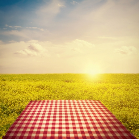 Picnic template with tablecloth in buttercup field against sun in sky photo
