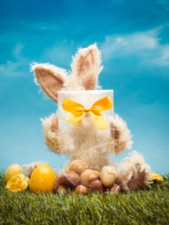 Easter bunny behind bag with chocolates in grass with eggs against blue sky photo