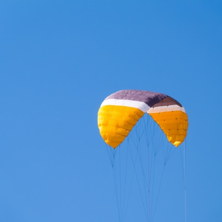 Kite in clear blue sky photo