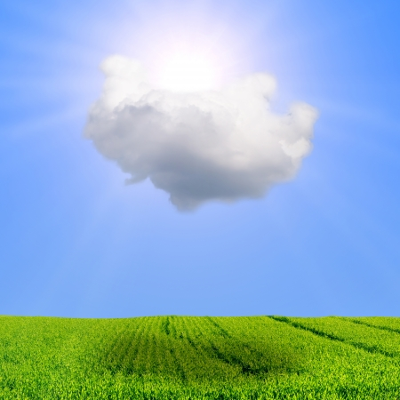 partly: Partly cloudy weather concept with cloud sun and field