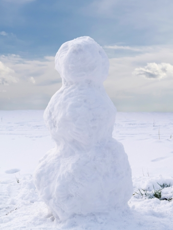 frosty the snowman: Undecorated snowman in winter landscape