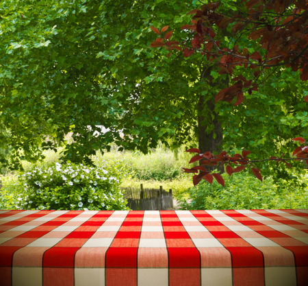 on the tablecloth: Picnic table template in garden  Stock Photo