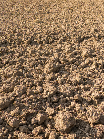 plowed: Fresh plowed field for background Stock Photo