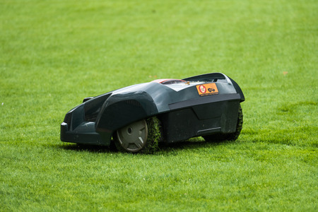 Lawn mower robot in grass, side view