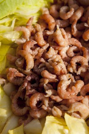 Salade de crevettes saine à la tomate et aux ? ufs Banque d'images - 88612196