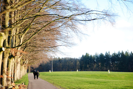 2 persons: 2 persons walking along trees and grass