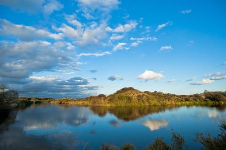 vegatation: Drinkwater reservoir in Meyendel