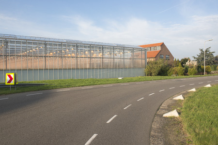 westland: Greenhouse and a house at a road in het Westland Editorial